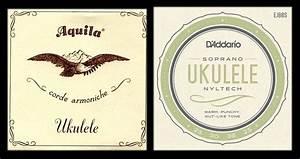 How To Choose Ukulele In Malaysia  Mato Music Ukulele