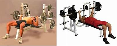 Bench Press Flat Chest Exercise Tips Bodybuilding