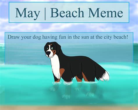 Beach Meme On Stray-city