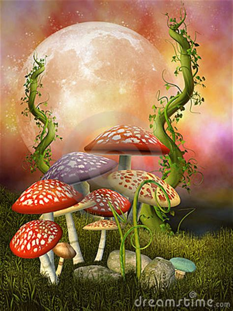 fantasy mushrooms royalty  stock photo image