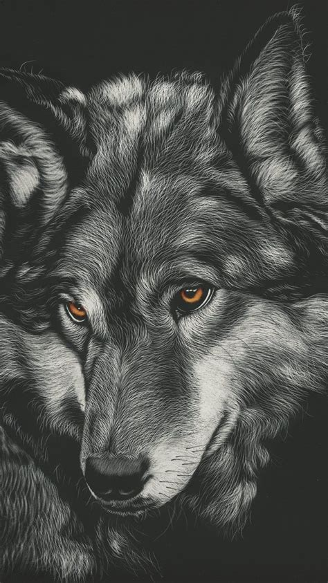 Wolf Wallpaper Phone Hd by Wolf Iphone Wallpapers Top Free Wolf Iphone Backgrounds