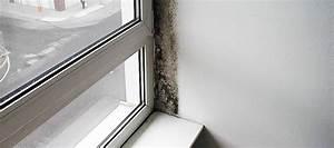 Aerateur De Fenetre : moisissure fen tre la fen tre a moisi que faire ~ Premium-room.com Idées de Décoration