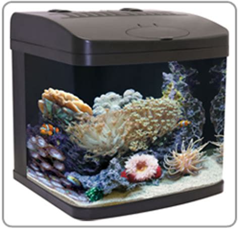 easy maintenance fish tank nano aquarium fish tanks nano tanks marina 360 nano aquarium
