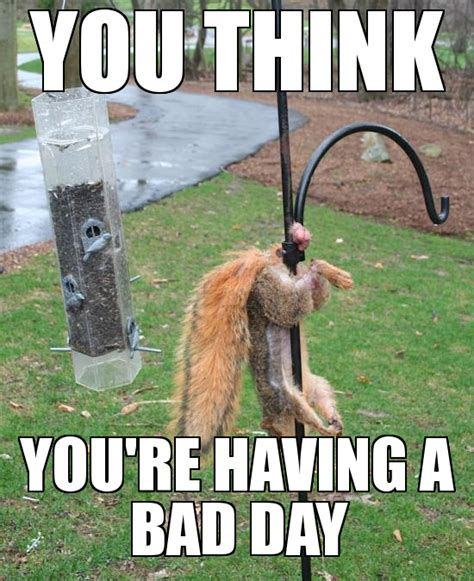 Bad Day Meme - meme generator bad day image memes at relatably com