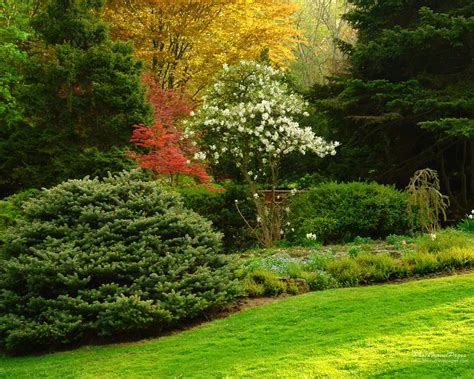 Garden Picture Hd by Garden Wallpapers Hd Wallpaper Pic Gallery