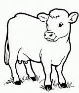 Coloring Printable Animals Barn Animal Farm Popular sketch template