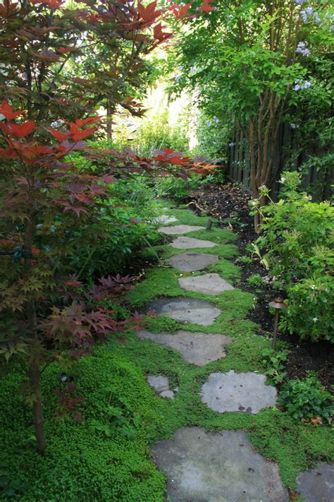superb garden stepping stones mode contemporary
