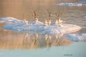 Псориаз озеро баскунчак