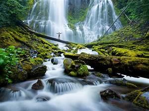 proxy falls river waterfalls eugene cascades