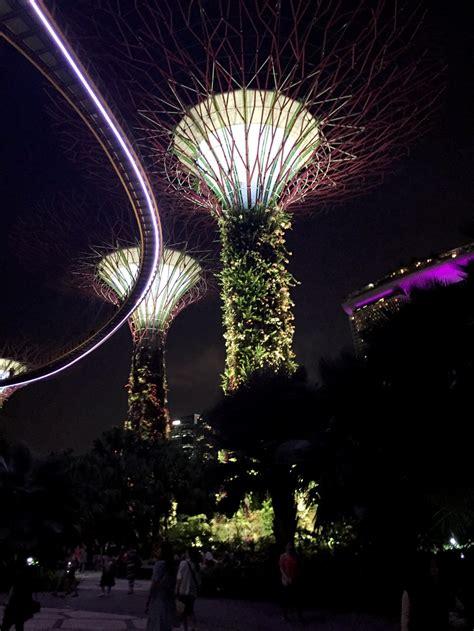 singapore gardens   bay supertree grove   ocbc skyway tily travels