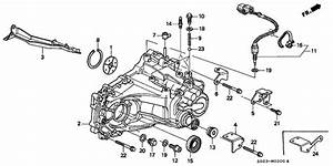 Honda S40 Transmission Diagram  Honda  Auto Parts Catalog And Diagram