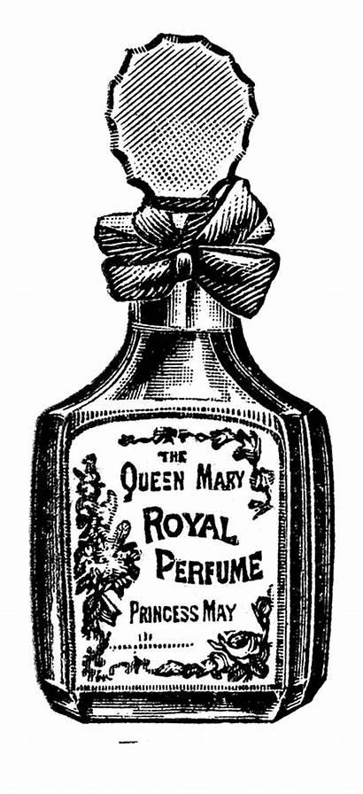 Perfume Clip Beauty Clipart Bottles Graphics Powder