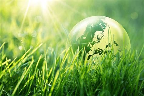 L'importance d'avoir un site web écologique