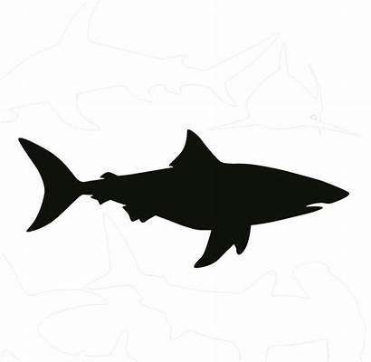 Shark Silhouette Clip Clipart Bull Outline Drawing