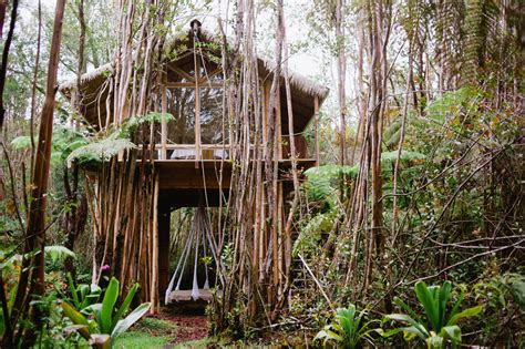Tree House Airbnb A Tiny Treehouse Super Charged Golf Courses And More From