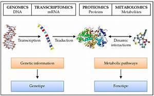 Journal of, nanoscience and, nanotechnology