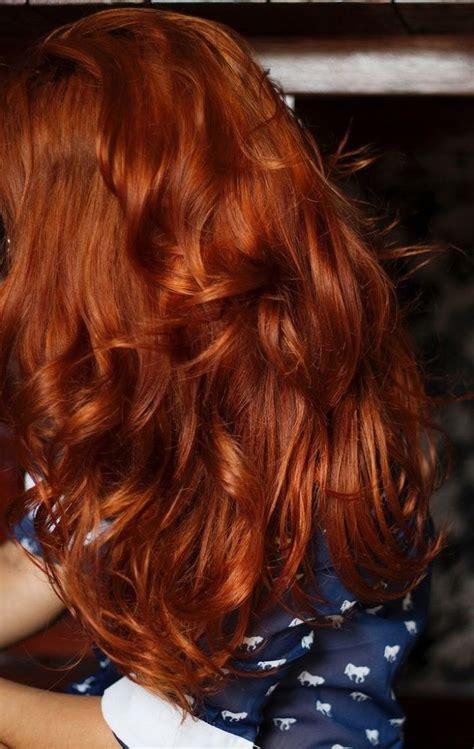 autumn hair color best 25 autumn hair color auburn ideas on