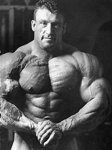 Dorian Yates Workout Routine  Diet Plan And Training Philosophy