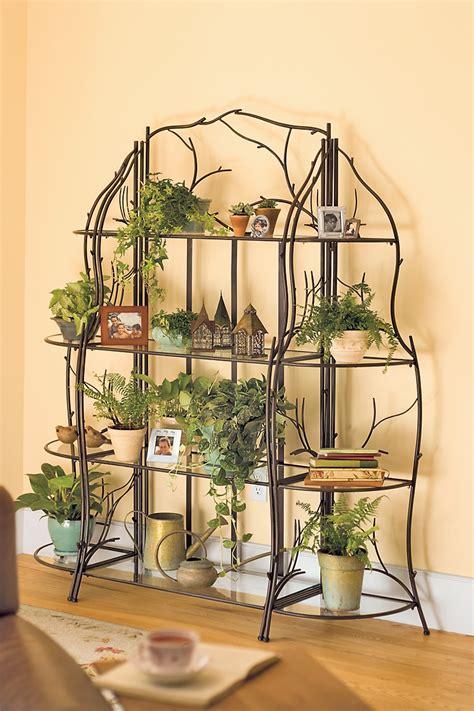 indoor plant shelves insert natural appeal   fresh interior homesfeed