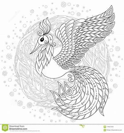 Coloring Firebird Exotic Stress Anti Bird Adults