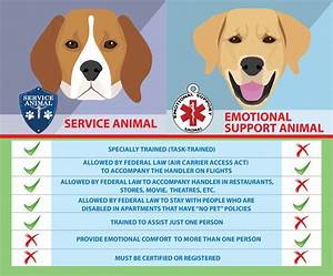 difference between service dogs emotional support animals With best place to get an esa letter