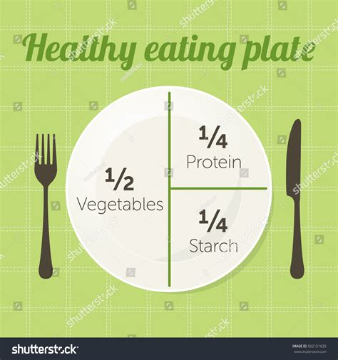 Diagram Of Healthy Plate by Healthy Plate Diagram Vector Stock Vector 562151035