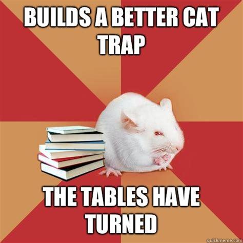 Cat Trap Meme - builds a better cat trap the tables have turned science major mouse quickmeme