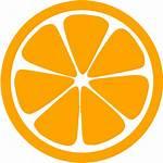 Orange Icons Icon Fruit Custom
