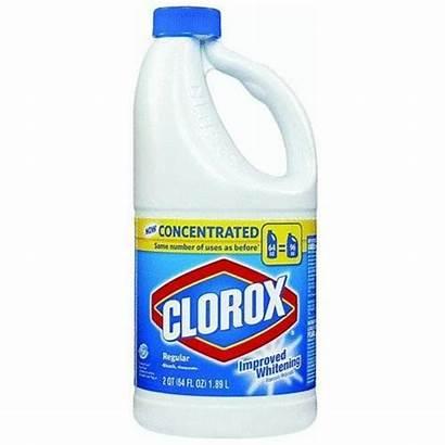 Bleach Labels Clorox Bottle Miniature Clean Mold