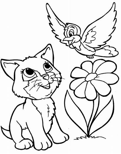 Coloring Animal Pages Cartoon Animals Printable Colouring