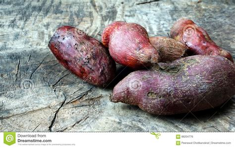 Sweet Potato Stock Photo Image Of Cultivates, Flesh