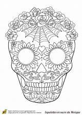 Coloring Pages Skull Sugar Adult Flower Skulls Spider Printable Muertos Dia Hugolescargot Halloween Squelette Dead Sur Flowers Mascaras Mandala Sheets sketch template