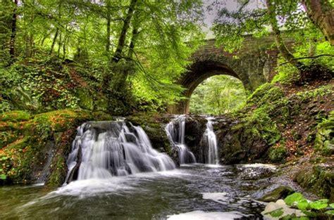 calm nature scene calm nature scene facebook twitter