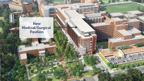 Medstar Georgetown University Hospital Plans Facility. How Much Money Does Solar Energy Save. Teachers College Of San Joaquin. Armor Protective Packaging Meal Delivery Plan. Microsoft Big Data Analytics 2012 Mazda 3i. Reviews For Memory Foam Mattresses. Denver Colleges And Universities. Airlines Credit Card Offers Cooper Auto Body. San Clemente Carpet Cleaning