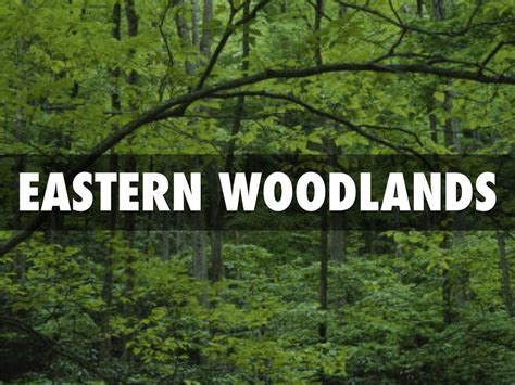 Eastern Woodlands Houses Pictures To Pin On Pinterest