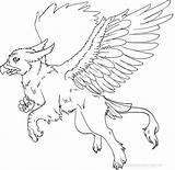 Griffin Gryphon Lineart Coloring Lines Creatures Creature Line Mythology Doodly Cerberus Deviantart sketch template