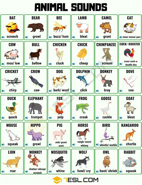 Animal Sounds: List Of Different Animal Sounds With