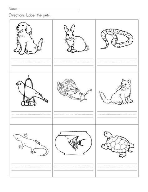 stempelkaart pets preschool theme pet