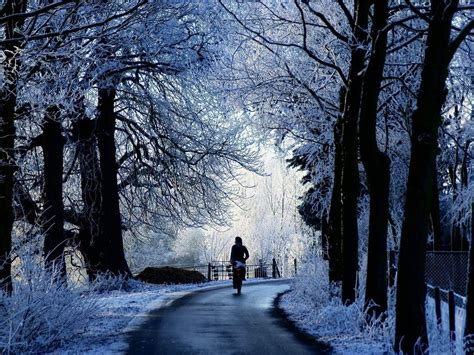 Background Winter Theme by Winter Themed Wallpapers Wallpaper Cave