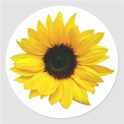 yellow sunflower flower envelope seal stickers zazzlecom