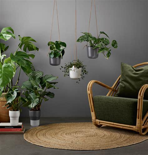 pflanzen zum aufhängen blumentopf zum aufh 228 ngen grau made in design