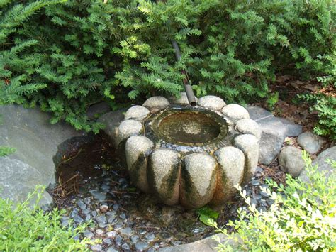 The Water Gardens by Water Basin Tsukubai