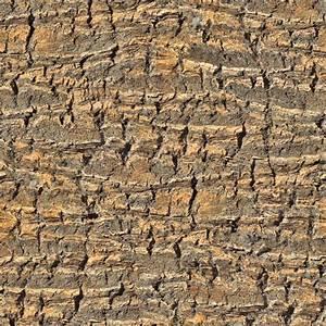 High Resolution Seamless Textures  Tree Bark Palm Tree 2 Seamless Texture 2048x2048