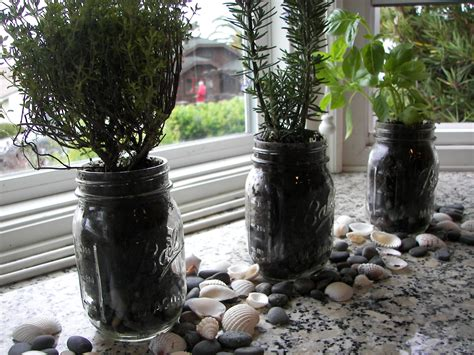 Grow Lights For Indoor Plants Canadian Tire by Indoor Herb Garden Kit Walmart Fresh Cool Indoor Herb