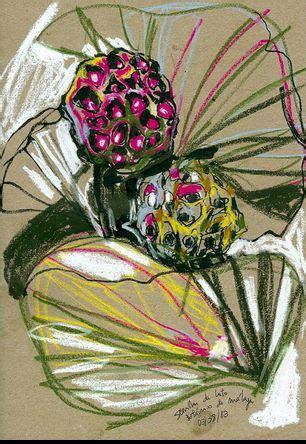 observational drawing ideas  pinterest