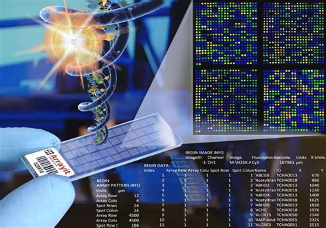 H25k Human Genome Expression Services  Microarray Gene. Usb Flash Drive Clearance Live Forex Trading. Why Renewable Energy Is Good. Jacksonville Fl Divorce Attorney. Black Widow Spiders Habitat Home Loans Ohio. Instant Oatmeal Vs Oatmeal Metal Roof Dallas. School Of Folk Music Chicago Red Tree Wine. Best Streaming Video Provider. Dental Assistant Schools In Phoenix Az