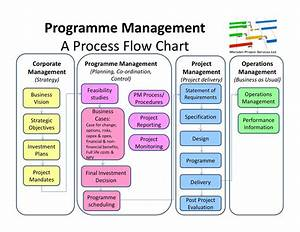 Programme Management Flow Chart