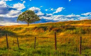 San Juan Mountains' Fall Landscape Portfolio | William ...  Fall