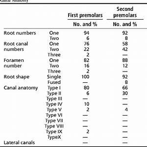 Teeth Anatomy Number