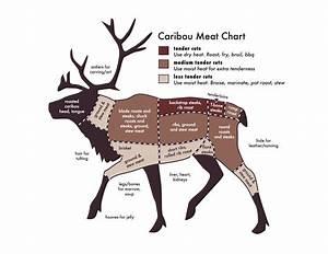 Elk Butchering Diagram